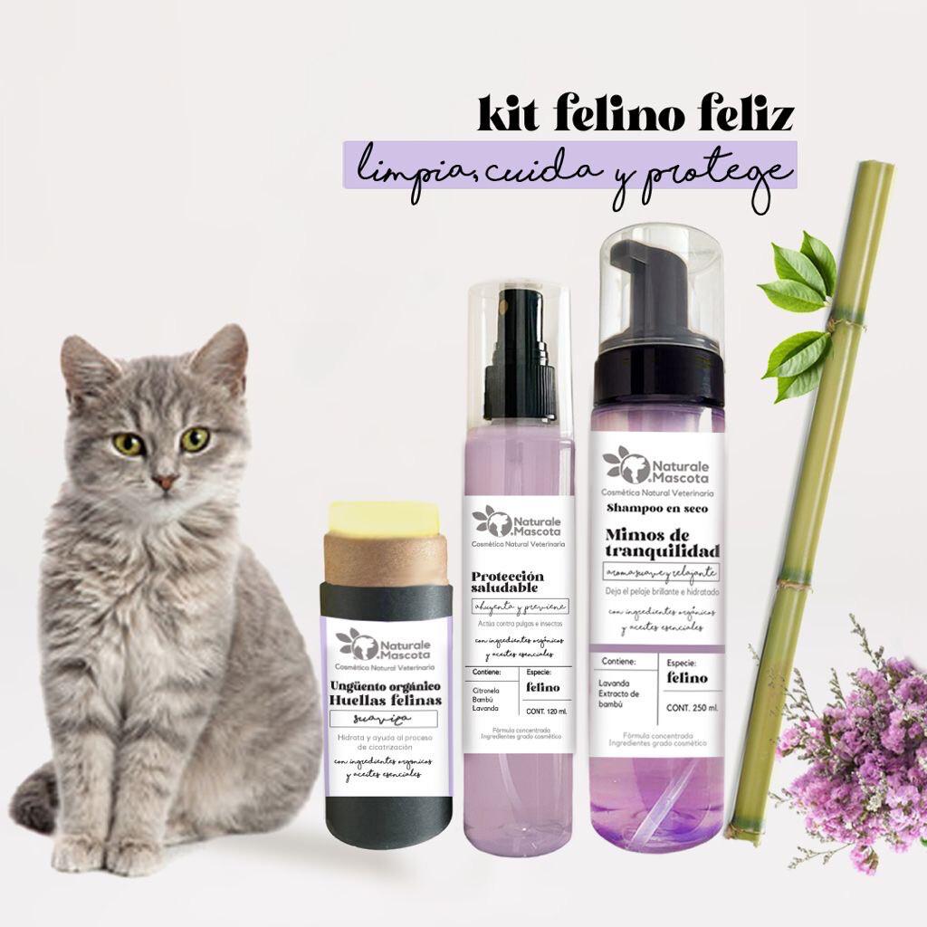 Kit Felino Feliz / Envío Gratis