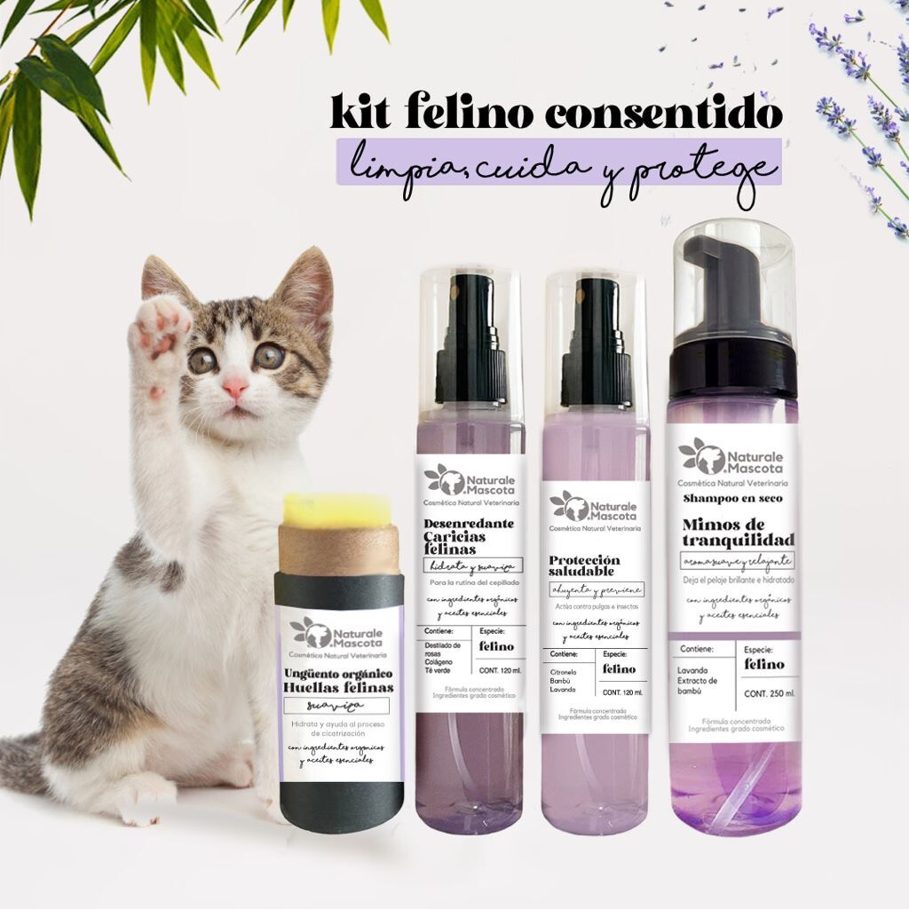 Kit Felino consentido / Envío Gratis