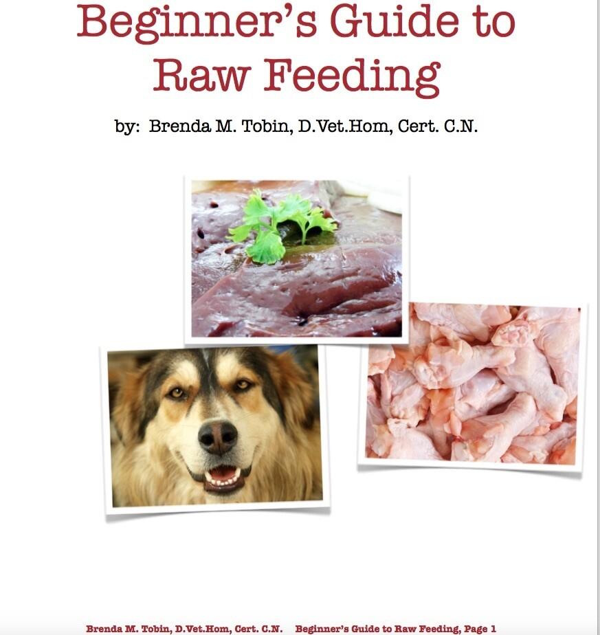 Beginner's Raw Feeding Pre-Recorded Webinar