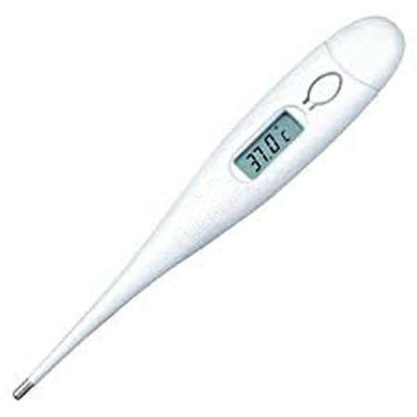 Ψηφιακό θερμόμετρο