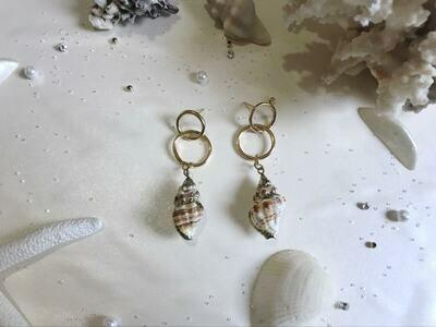 Σκουλαρίκια κοχύλι