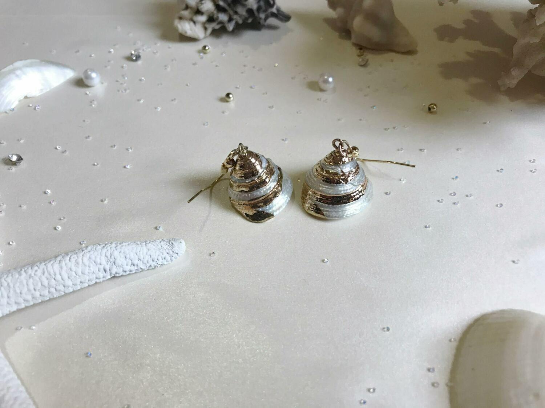 Σκουλαρίκια κοχύλι με χρυσές λεπτομέρειες