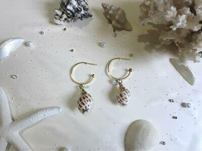 Σκουλαρίκια κοχύλι με στρας