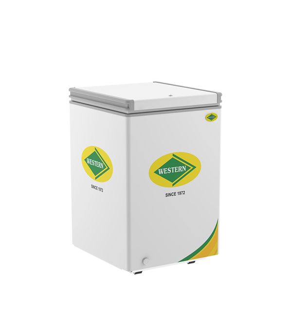 Hardtop Freezer 125H