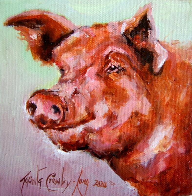 "PIG-malion (6 x  6"")"
