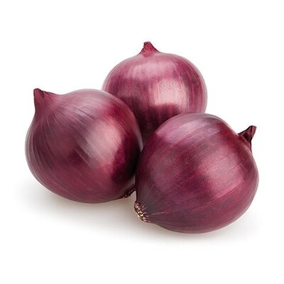 ONION RED LB