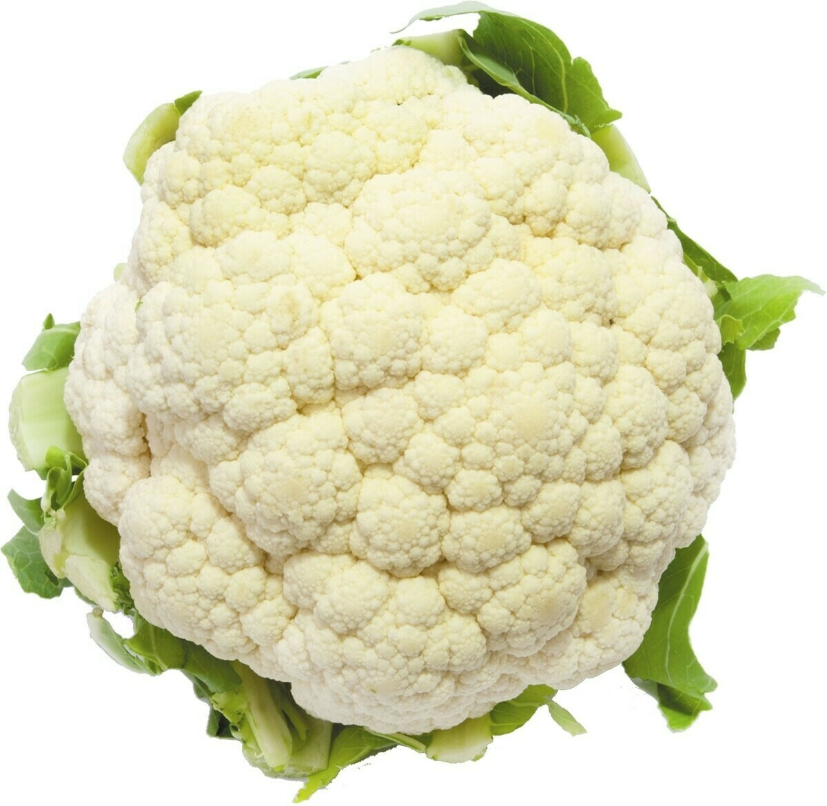 CAULIFLOWER PC