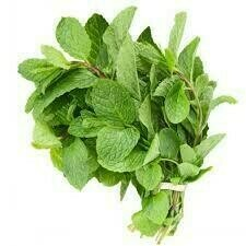 MINT LEAVES BUNCH PC