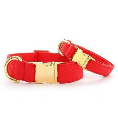 Ruby Dog Collar Gold Buckle