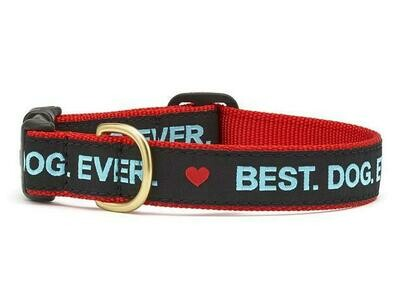Up Country Inc Best Dog Ever Dog Collar