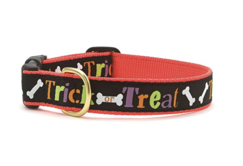 Up Country Trick or Treat Collar