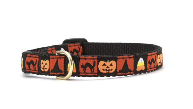 Up Country Halloween Cat Collar
