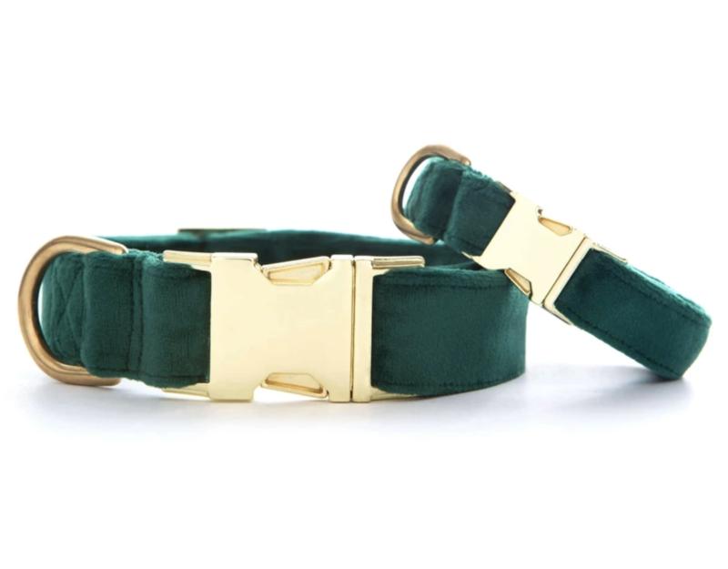 Foggy Dog Forest Green Velvet Dog Collar