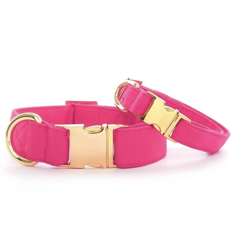 Hot Pink Dog Collar