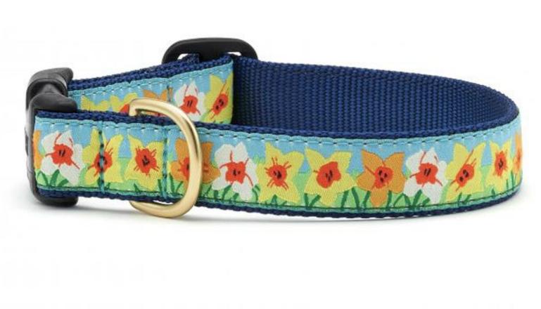 Up Country Daffodil Dog Collar