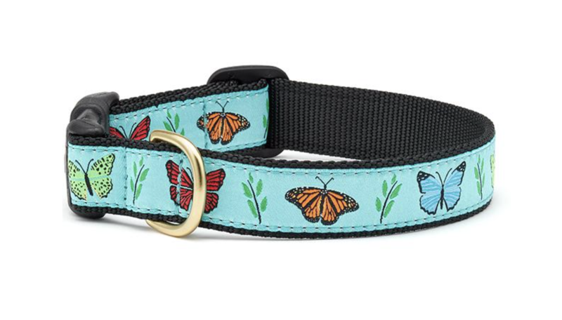 Up Country Butterfly Effect Collar