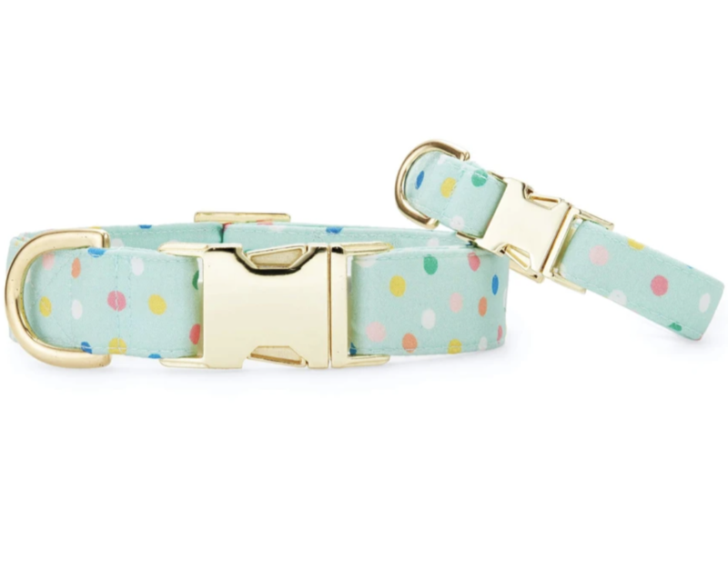 Foggy Dog Confetti Dots Dog Collar