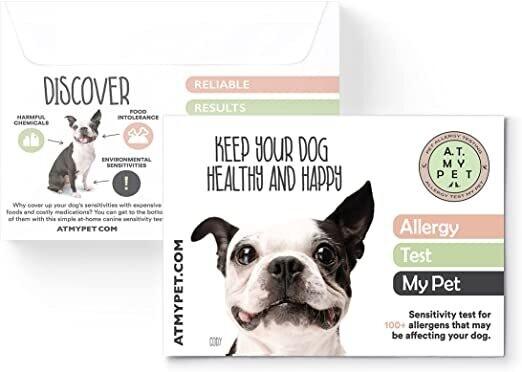 Allergy Test My Pet