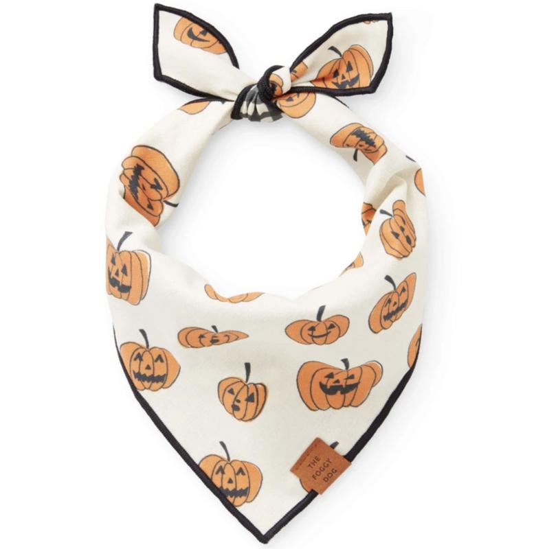 Foggy Dog Pumpkin Patch reversible bandana