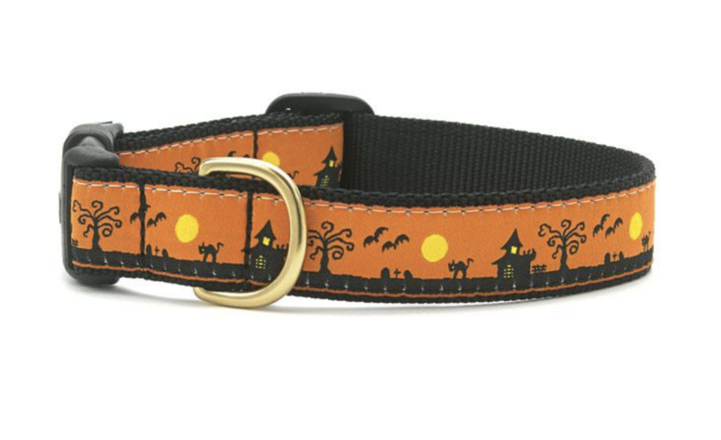 Up Country Inc. Spookytown Collar