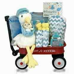 Baby Gift Basket - Look What the Stork Brought