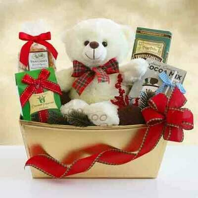 Beary and Bright Holiday Gift