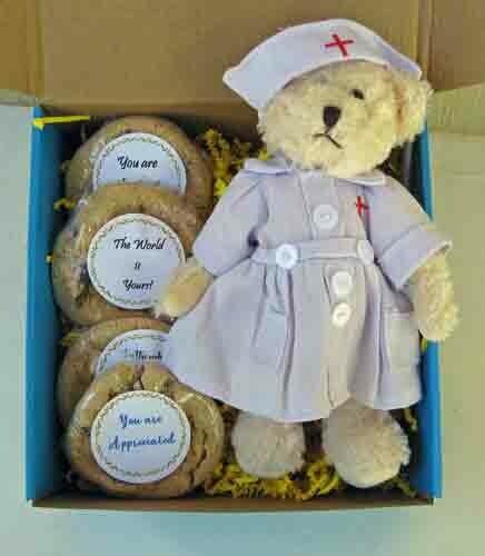 Nurse Teddy Bear and Cookies