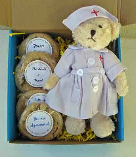 Nurse Teddy Bear and Cookies