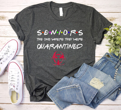 Seniors The One Where They Were Quarantined 2020 Friend Gift T-Shirt