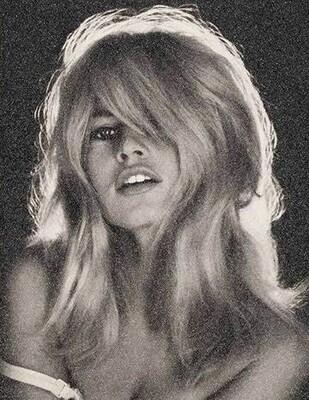 Je t'aime Bardot by Simon Claridge