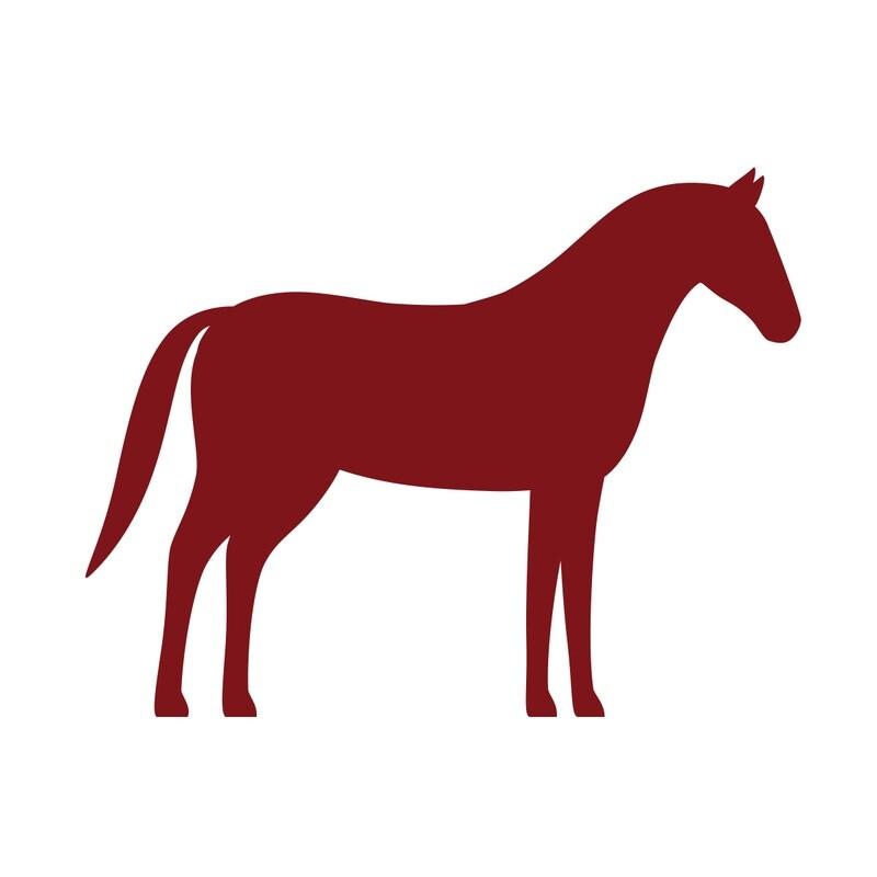 Paire de Gendarmes de cheval