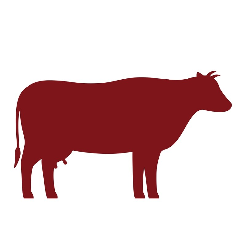 Viande de bœuf pour animaux maison congelé (1kg)