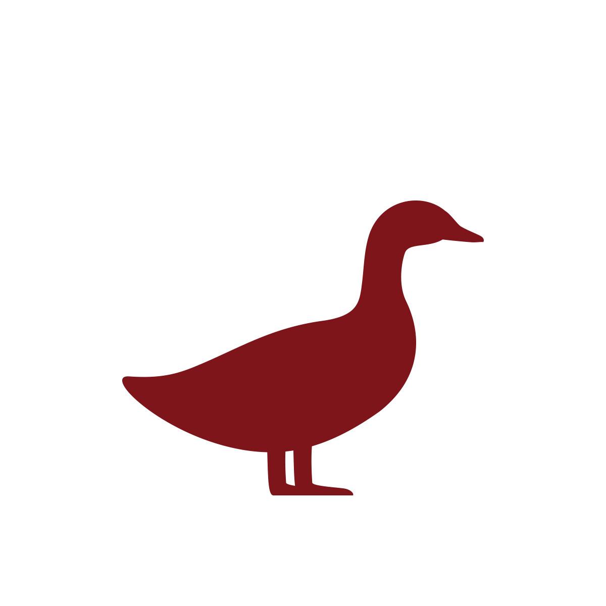 Chinoise canard dégraissé (250gr)