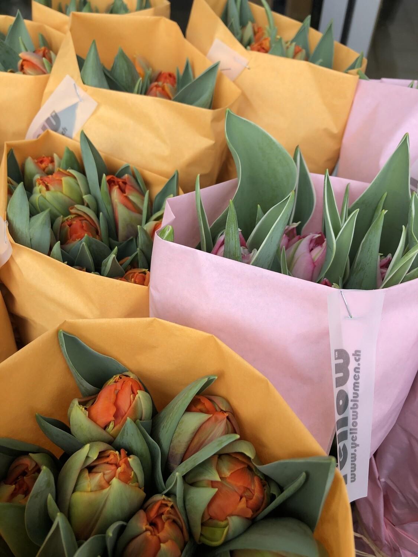 Tulpen gefüllt 10er Bund