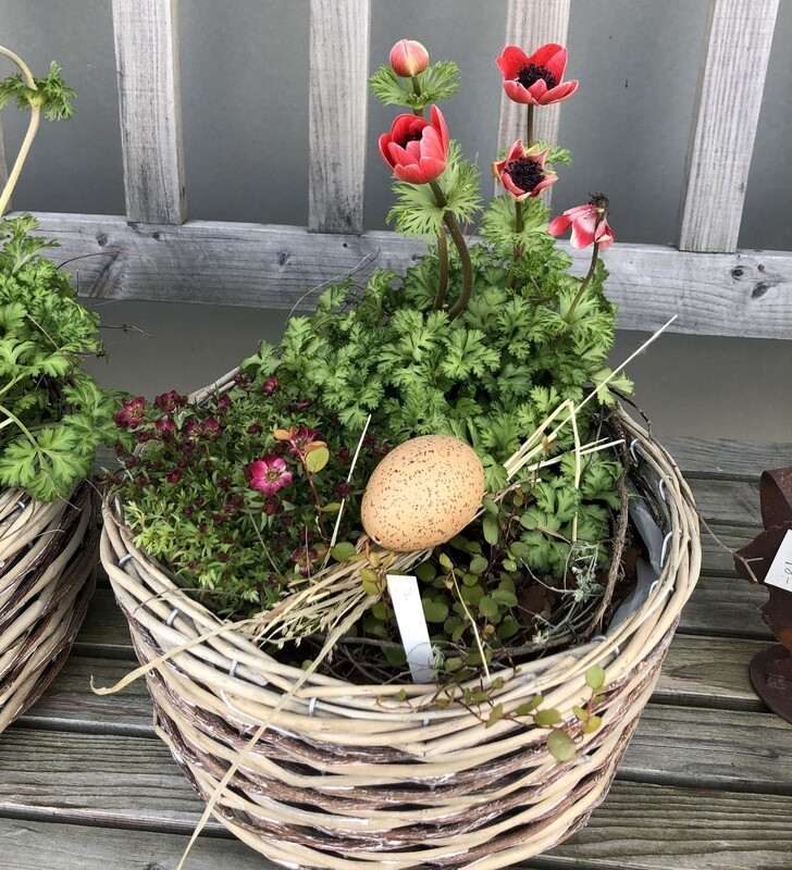 Blumenschale für Draussen
