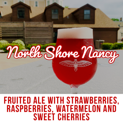 North Shore Nancy Fruited Ale - 16oz Can
