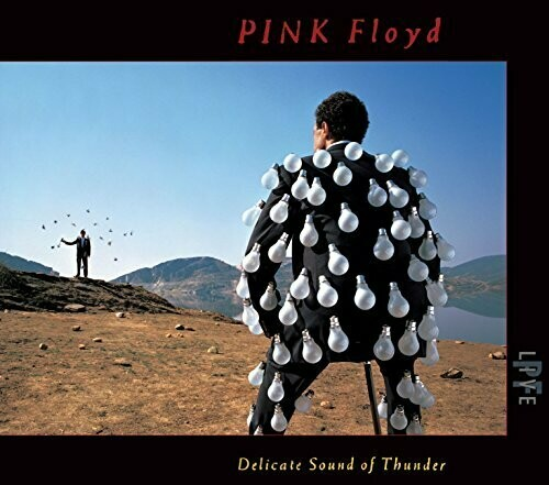 """Pink Floyd """"Delicate Sound Of Thunder"""" VG- 1988 {2xLPs!}"""