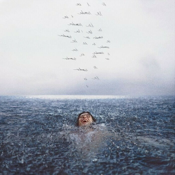 """{DSCGS} Shawn Mendes """"Wonder"""""""