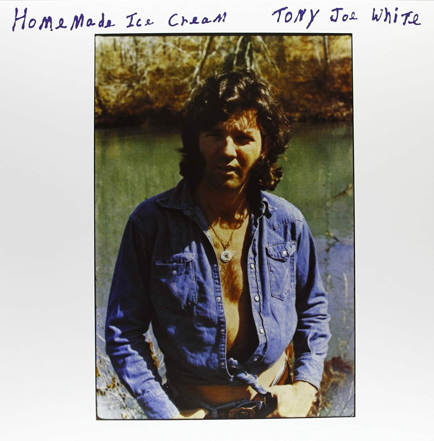 "Tony Joe White ‎""Home Made Ice Cream"" VG 1973"