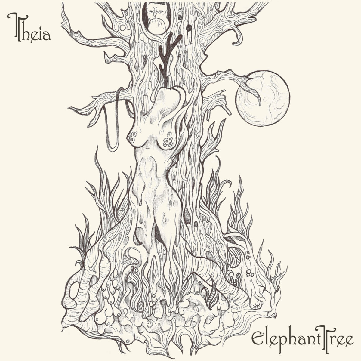 "Elephant Tree ""Theia"""