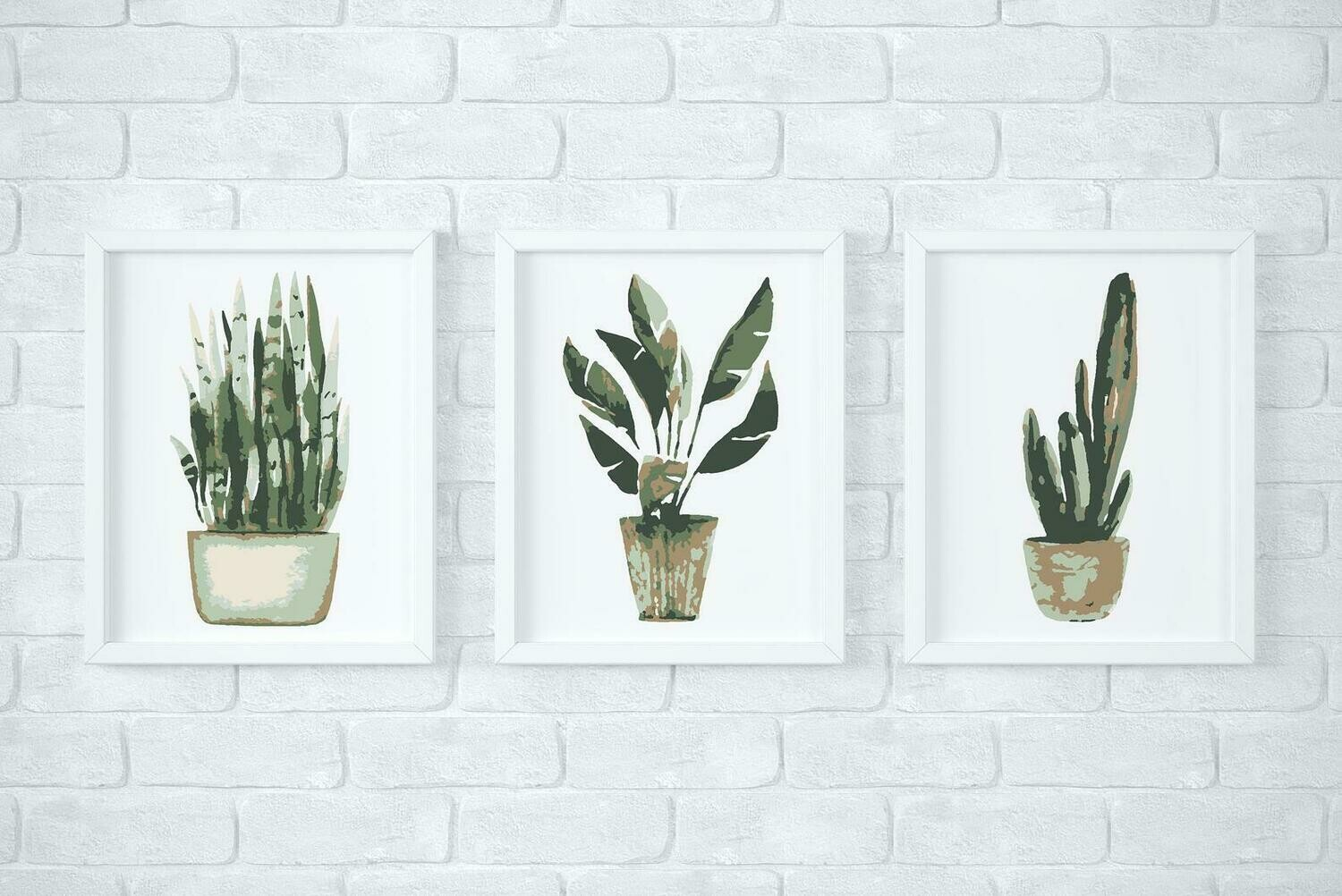 Potted Plants Paint by Number kit