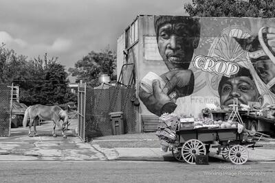 Fremont Street Baltimore