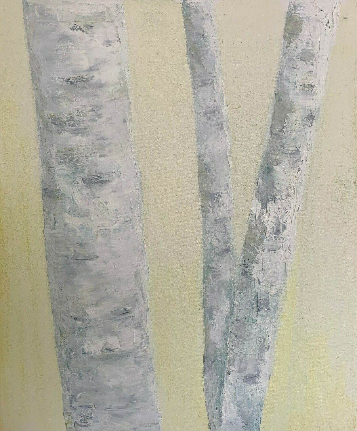 The Birch Trees