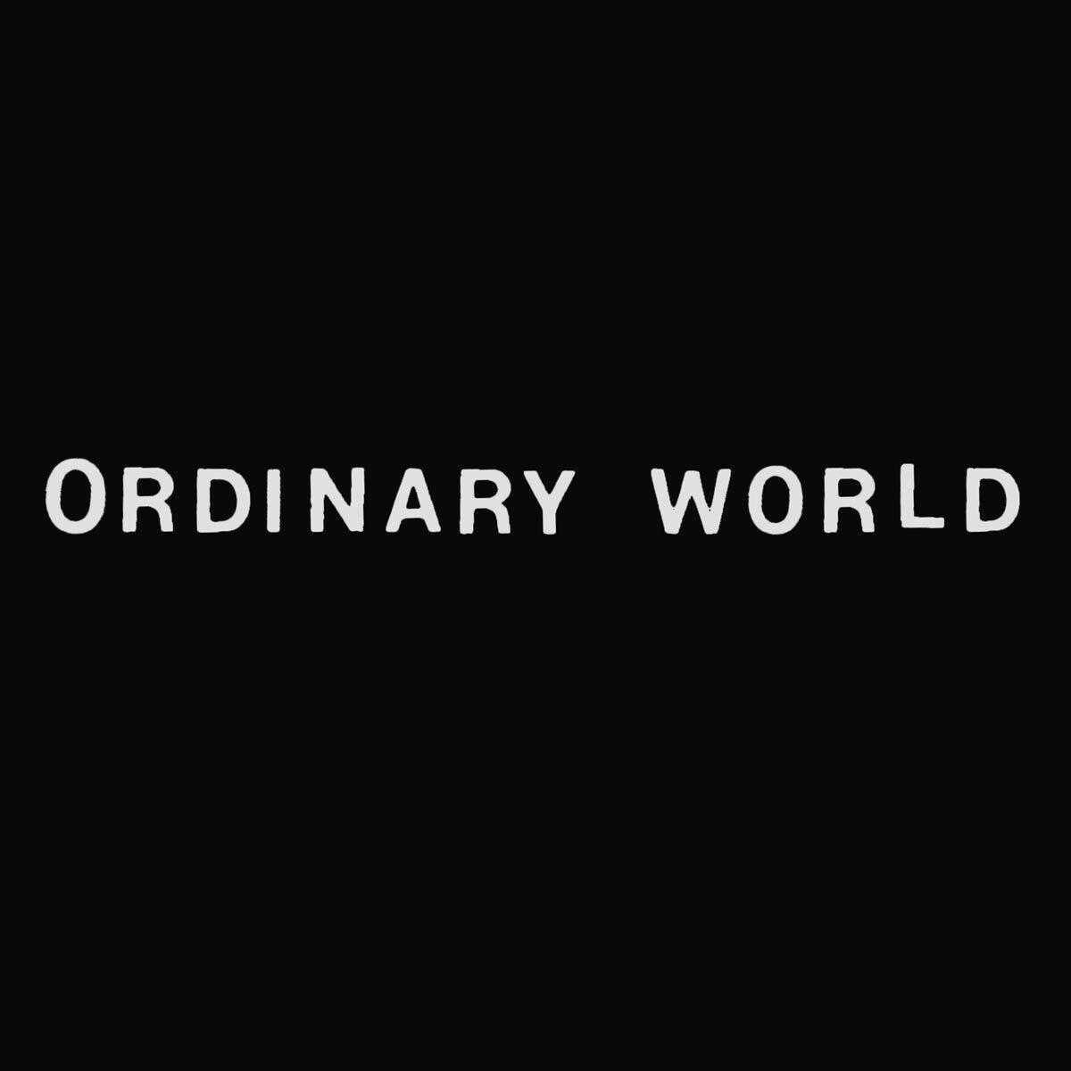 ORDINARY WORLD shirt