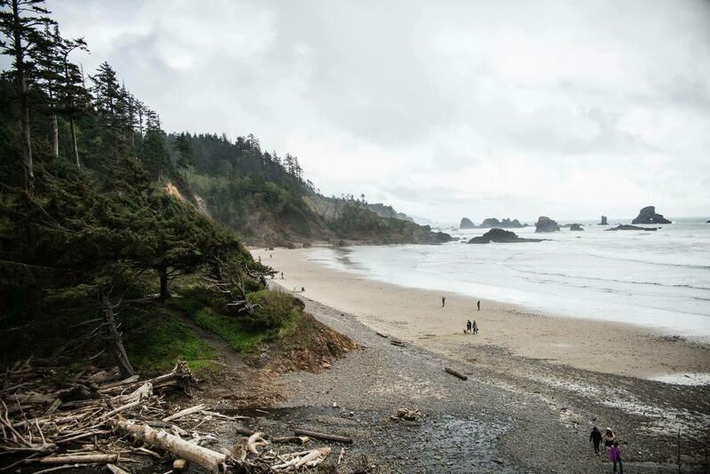 Oregon Coast 11X14