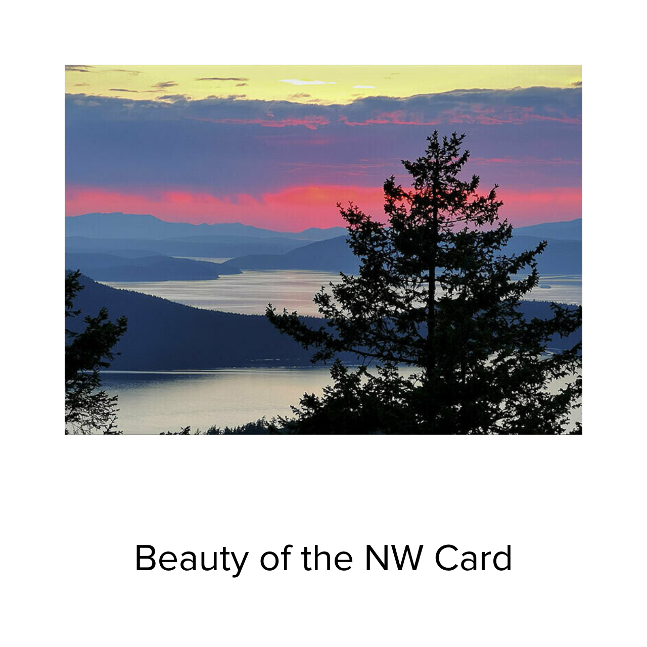 BJ Card Beauty of the NW