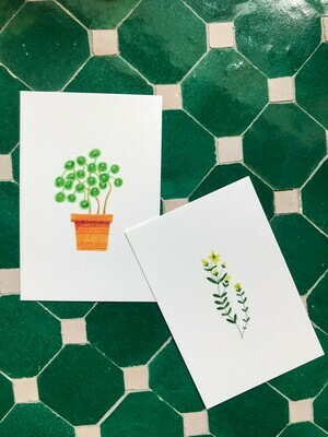 pink cloud studio | Plants Mini Cards (6 x 9 cm) - different designs