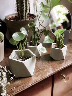 Mare Marble Plant Pot Large - Olive Green (plant not included)
