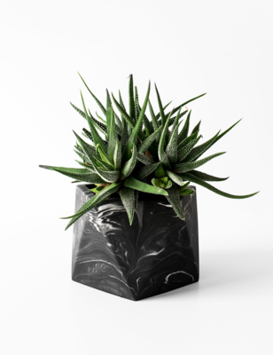 Mare Marble Plant Pot Large - Black marble (plant not included)