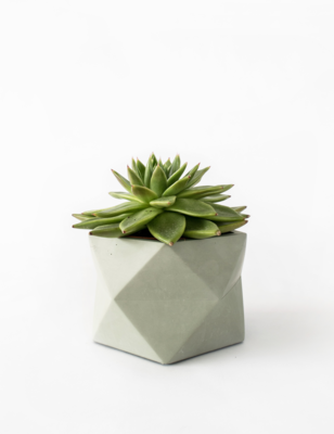 Palua Marble Plant Pot Large - Olive Green (plant not included)